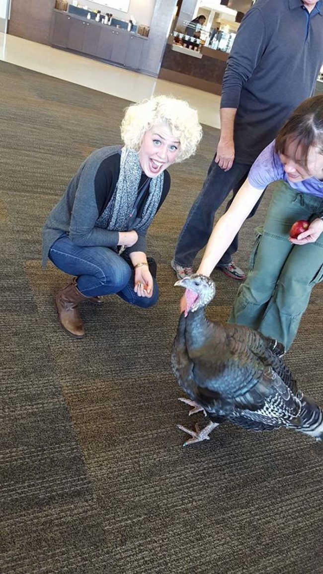 For example, there's this emotional support turkey that was spotted on a flight to Seattle last week.