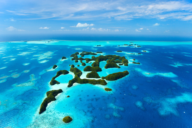 Dive off the coast of each island in Palau.