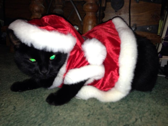 "Activating his ""Santa Claws"" in 3...2..."