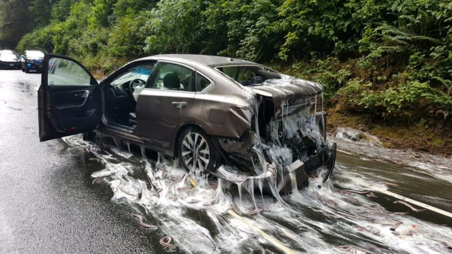 The other containers spilled, and this caused a chain reaction. Four other vehicles were involved in the accident. Yikes!